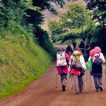 Camino en Grupo
